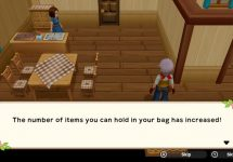 How to Increase Bag Space in Harvest Moon One World